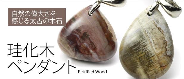 ペトリファイドウッド(珪化木)ペンダント