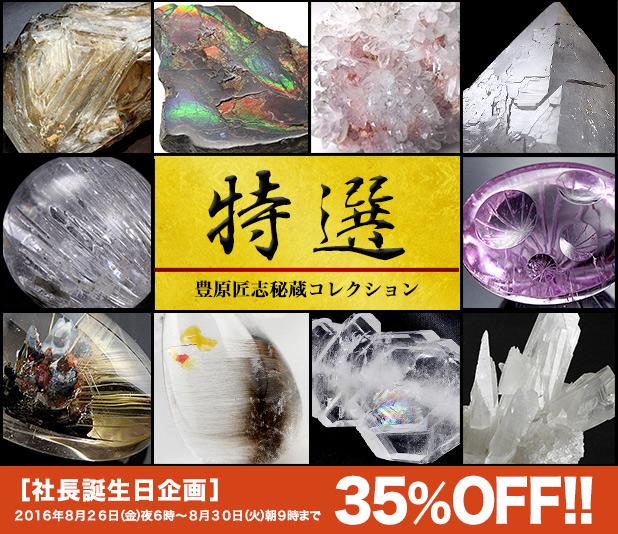 豊原匠志秘蔵コレクション35%OFF