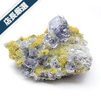 【店長厳選】中国 福建省産フローライト共生水晶クラスター-073