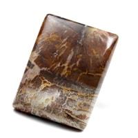 ペトリファイドウッド(珪化木)磨き-003