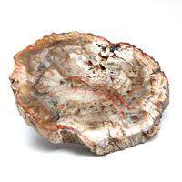 マダガスカル産ペトリファイドウッド(珪化木)磨き-006